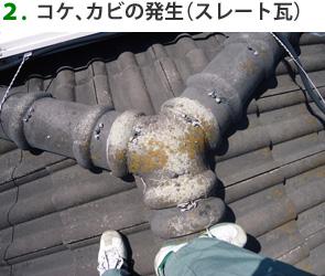 2.コケ、カビの発生(スレート瓦)