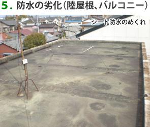 5.防水の劣化(陸屋根、バルコニー)シート防水のめくれ